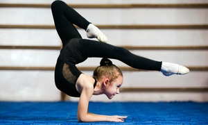 Perfection Gymnastics: One- or Three-Month Membership for a Child Ages  2–3 and Parent at Perfection Gymnastics  (Up to 62% Off)