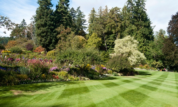 Get Greener Spaces - Regina: $49 for a Lawn-Care Package with Fertilizer and Weed Control from Get Greener Spaces ($100 Value)