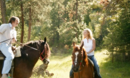 One-Hour Group Horseback Trail Ride for One or Two at Equine Escapes (Up to 51% Off)
