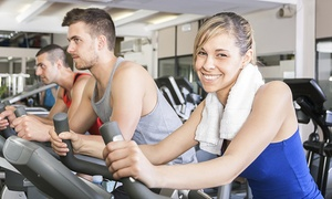 Peninsula Fitness: 30-Day Gym Membership for One ($9), Two ($19) or Three People ($29) at Peninsula Fitness (Up to $270 Value)