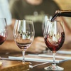 Up to 43% Off a Wine Tasting with Tapas