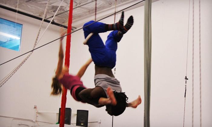 Nova Gymnastics - Nova Gymnastics: Two One-Hour Trapeze and Silks Classes for One or Two, or Two Gymnastics Classes at Nova Gymnastics in Davie (Up to 61% Off)