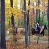 50% Off Horseback Trail Experience