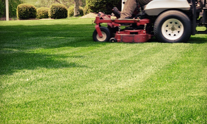 Lawns of Charleston - Charleston: 2, 6, 12, or 24 Lawn-Cutting Visits from Lawns of Charleston (Up to 60% Off)