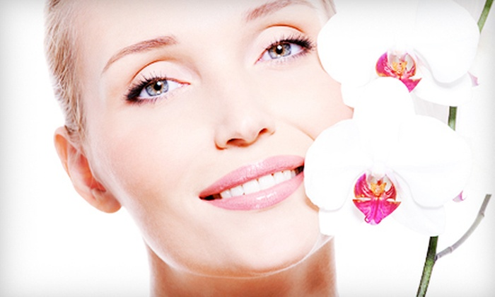 Pure Aesthetics Boutique Day Spa - Kenner: One, Two, or Three Organic Microdermabrasion Treatments and Facials at Pure Aesthetics Boutique Day Spa (Up to 72% Off)