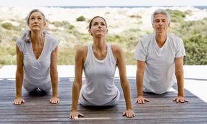 Moksha Yoga Peterborough: CC$59 for CC$300 Worth of 2 Months of Unlimited Yoga at Moksha Yoga Peterborough