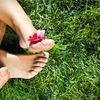 56% Off Summer Lawn Fertilization