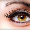 Half Off Eyelash Extensions at Bloom Lash Boutique