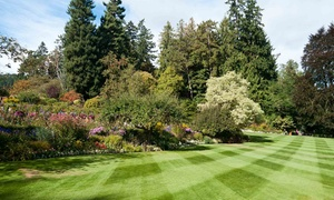 Simply Green Landscaping: Two or Four Lawn-Mowing Sessions from Simply Green Landscaping (Up to 56% Off)