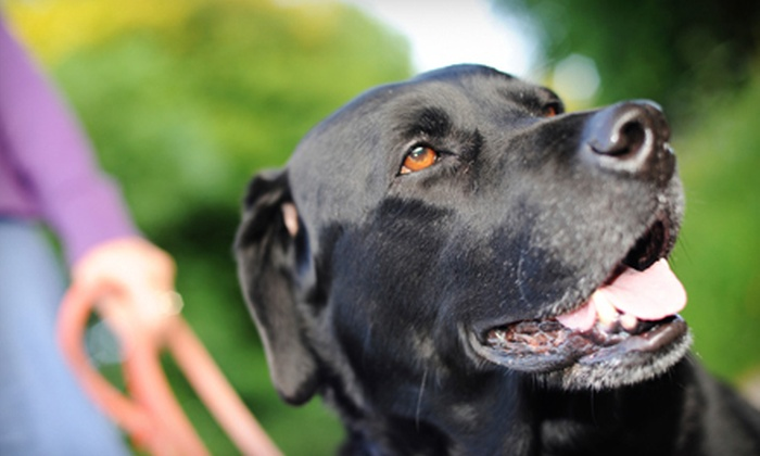Delaware Pooper Scoopers - Philadelphia: Four or Eight Weeks of Pet-Waste Removal with Deodorizing Spray from Delaware Pooper Scoopers (Up to 65% Off)