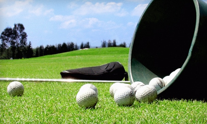 Pierce Park Greens and Divotz Golf & Driving Range - Multiple Locations: Five Buckets of 110 Range Balls or One Lesson at Pierce Park Greens and Divotz Golf & Driving Range (Up to 51% Off)