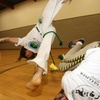Up to 66% Off Capoeira (martal arts) class at Capoeira Angola Palmares