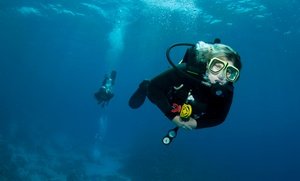 Desert Divers: Intro Scuba or Snorkeling Course or Scuba Refresher Course at Desert Divers (Up to 80% Off)