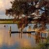 Charming Suites in Coastal South Carolina