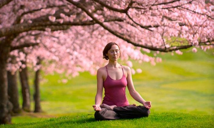 Yoga Teacher Training - Los Angeles: $1,599 for 200-Hour Training Starting July 5, October 4, or November 30 from Yoga Teacher Training ($3,800 Value)