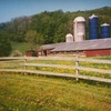 Up to 53% Off a Farm Outing for 4 or 6 in Hancock