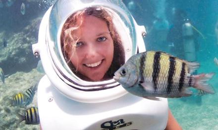 Tour guiado bajo el agua, snorkel, foto impresa y hamaca en el Maroa club para adulto o niño desde 59,90 € en Sea Trek