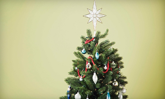 Deliver A Tree To Me - Ottawa: $65 for an Up to 8-Foot Christmas Tree with Delivery and Setup from Deliver A Tree To Me ($130 Value)