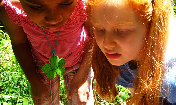 Fresh Air Family - Multiple Locations: Prepared, Not Scared or Gross Out Summer Camp from Fresh Air Family (Up to 52% Off)