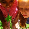 Up to 52% Off Summer Camps from Fresh Air Family