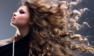 Vivid Beauty Bar: Haircut with Option for Single-Process Color or Partial or Full Highlights at Vivid Beauty Bar (Up to 62% Off)