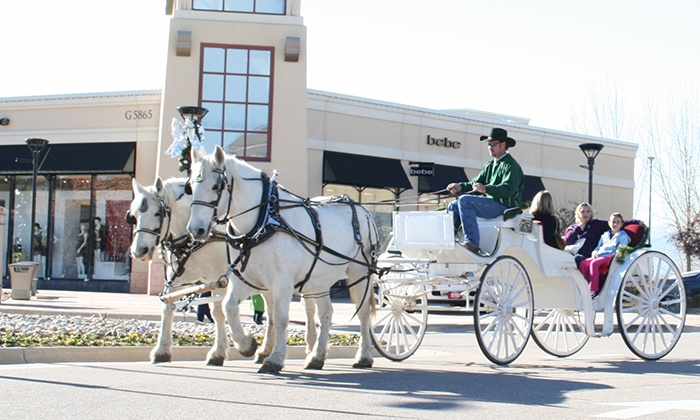 Colorado Carriage and Wagon - Denver: Horse Drawn Carriage Ride for Two or Six with Saltwater Taffy in Estes Park (Up to 74% Off)