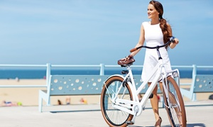 Electribike - Miami Beach: Electric-Bike or Beach-Cruiser Rentals from Electribike - Miami Beach (Up to 50% Off). Four Options Available.