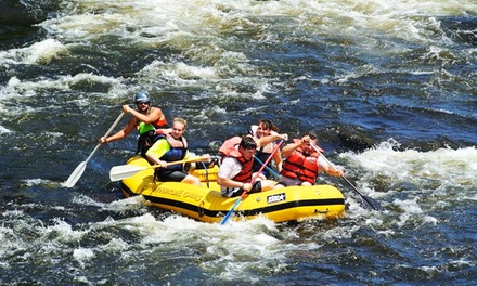 Salmon River Rafting Trip for Two or Four from Adventure Calls Outfitters, Inc. (50% Off)
