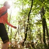 Up to 54% Off a Hike and Wine Tasting