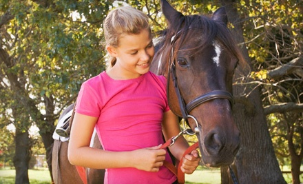 One 60-Minute Children's Pony- or Horseback-Riding Lesson (a $25 value) - Gallop Again in