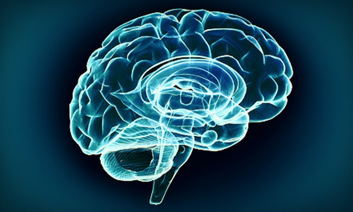 Santa Barbara Brain Fitness - Goleta: Brain-Fitness Training or Brain-Map Assessment at Santa Barbara Brain Fitness (75% Off)