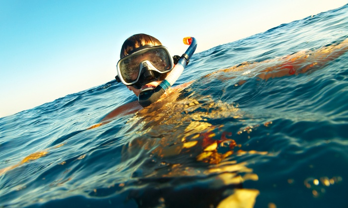 The Snorkel Store - Multiple Locations: One Week of Gear Rental for One, Two, or Four at The Snorkel Store (Up to 52% Off)