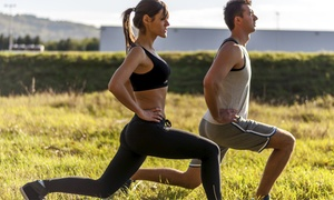 Holistic Personal Training la: Three, Six or Nine Holistic Personal-Training Sessions at Holistic Personal Training la (Up to 59% Off)