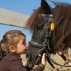 Stage d'équitation pour enfants