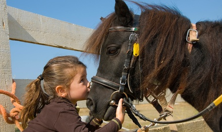 Up to 48% Off Family Petting-Zoo Visit at The Good Earth Farm and Foundation. Two Options Available.