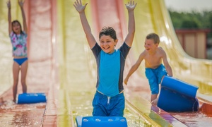 Hawaiian Falls: $18.99 for One-Day Admission to the Water-Park and Adventure Park at Hawaiian Falls ($26.99 Value)