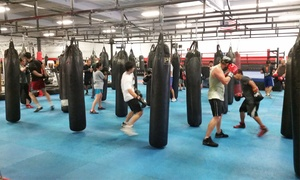 South Coast Martial Arts: One Month of Martial Arts Classes for One or Two at South Coast Martial Arts (Up to 56% Off)