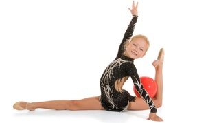 ANS Rhythmic Gymnastics: A Gymnastics Class at ANS Rhythmic Gymnastics (63% Off)