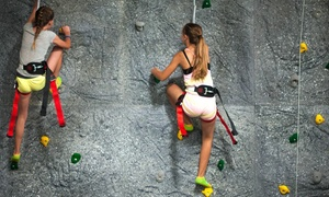Rockin Jump: 60- or 90-Minute Jump Passes at Rockin Jump (Up to 45% Off)