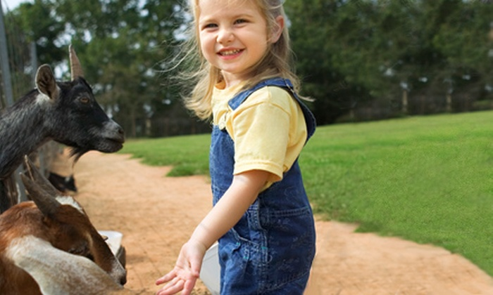 Hidden Haven Farms - Jamul: $99 for Two-Day Kids' Farm Life and Horseback-Riding Camp at Hidden Haven Farms ($170 Value). Three Options Available.