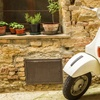 25% Scooter Tour or Rental