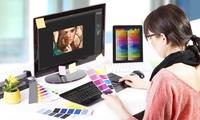 12 Monate Onlinekurs Grafikdesign mit Adobe InDesign, Illustrator und Photoshop bei Lecturio(55% sparen*)