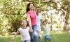 Bug Stoppers - Greenville: Home Pest Control Treatment, Yard Flea and Tick Treatment, or Both Treatments from Bug Stoppers (Up to 71% Off)