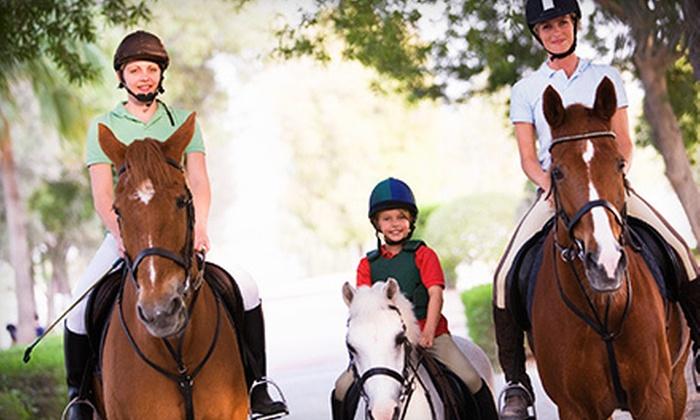 Stony Glen Stables - Pilot Point-Aubrey: Two or Four One-Hour Horseback-Riding Lessons at Stony Glen Stables in Aubrey (Up to 54% Off)