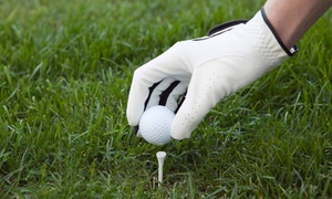 River Pointe Golf Club: 18 Holes with a Cart Rental and Bags of Range Balls for Two or Four at River Pointe Golf Club (Up to 51% Off)