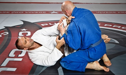 5 or 10 Boxing or Brazilian Jiujitsu Classes or One-Month Unlimited at BADDOG Sports Performance (Up to 71% Off)