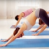 Up to 81% Off Classes at Living Tradition Yoga