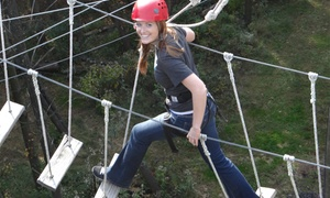 Summit Vision: Four Hours of Open-Play Rope Courses for One, Two, or Four at Summit Vision (Up to 63% Off)