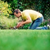 Up to 58% Off Lawn-Care Services
