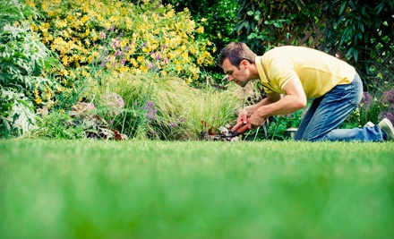 Lawn Aeration Valid up to 10,000 Sq. Ft. Area (a $100 value) - Tuff Turf Molebusters in